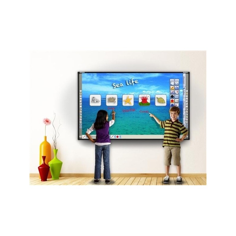 Kit Lavagna interattiva + videopr. + staffa